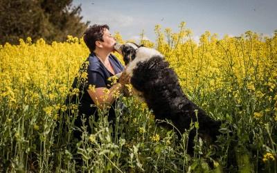 Problemhund Therapie